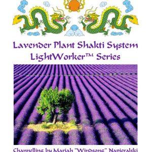 Lavender Plant Shakti System LightWorker™ Series