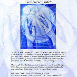 Punishment Flush™